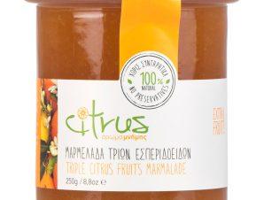 """Χειροποίητη μαρμελάδα τριών εσπεριδοειδών, Χίου """"Citrus"""" 250g>"""