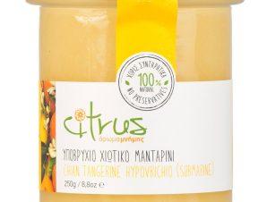 """Παραδοσιακό υποβρύχιο χιώτικου μανταρινιού """"Citrus"""" 250g>"""